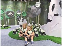 迪拜世博会迎来大熊猫保护主题展